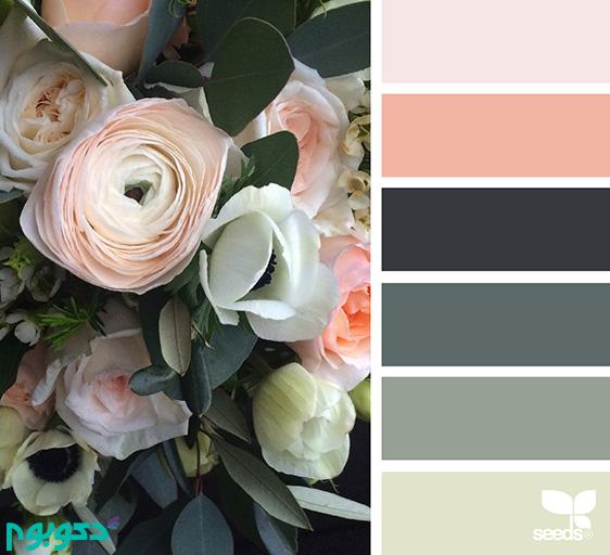 ColorFlora_150