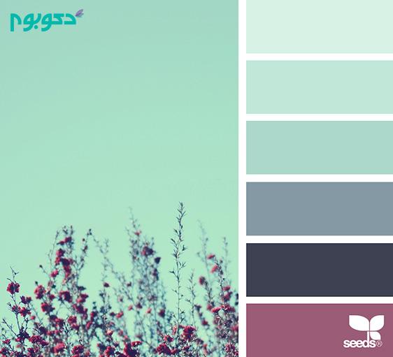 پیشنهادهای رنگی دکوبوم