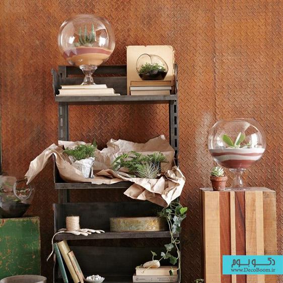 نمایش بی نظیر گیاهان و کاکتوس ها در دکوراسیون داخلی منزل