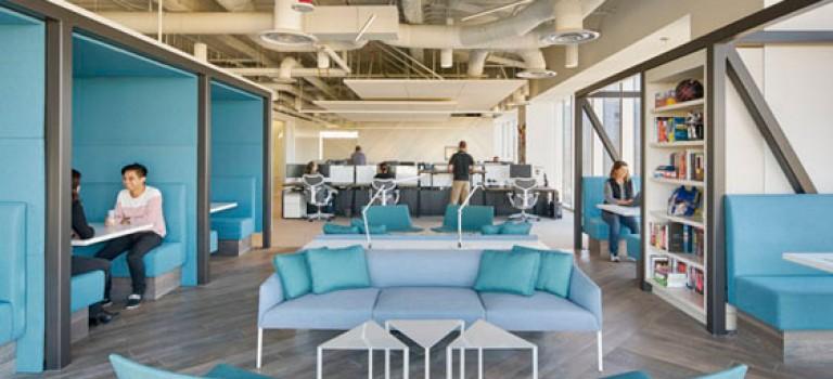 رنگ های شارپ در دکوراسیون داخلی دفتر کار