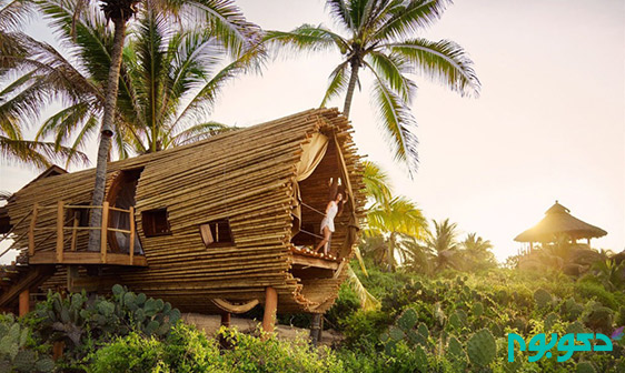 playa-viva-treehouse-1020x610