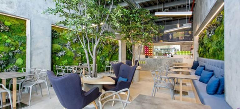 دکوراسیونی سبز و دلپذیر در طراحی داخلی این رستوران