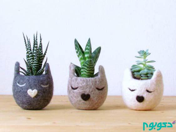 گیاهان آپارتمانی خلاقانه