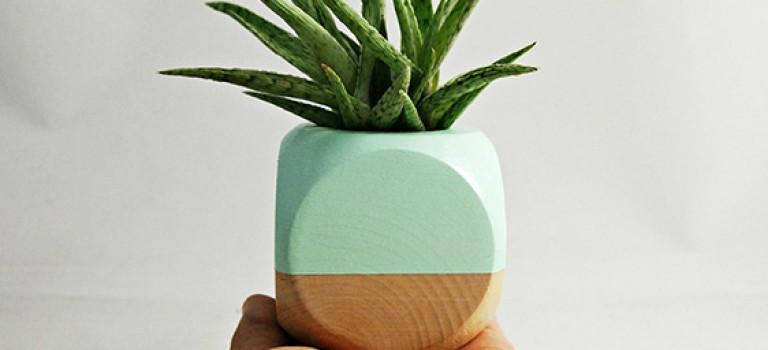 ایده هایی برای داشتن خانه سبز