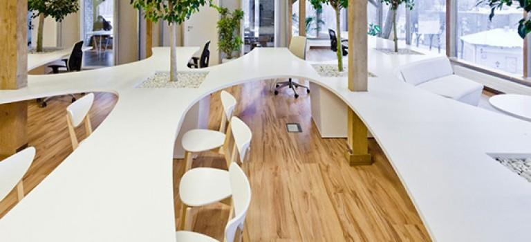 طراحی داخلی دفتر کار سبز توسط طراحان OpenAD