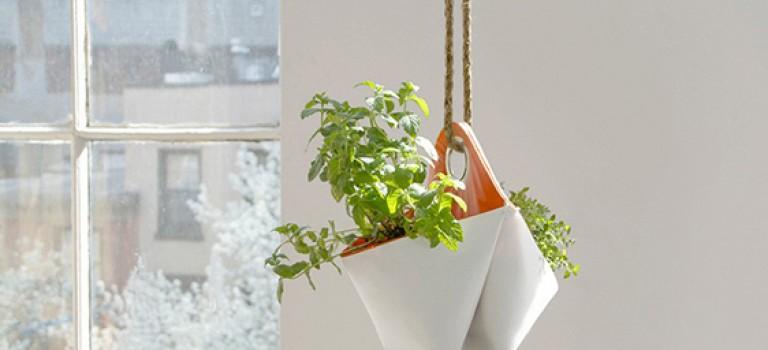 شیوه های نوین نمایش گیاهان در دکوراسیون داخلی خانه (قسمت اول)