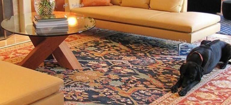 دکوراسیون منزل ایرانی مدرن و سنتی : نشیمن