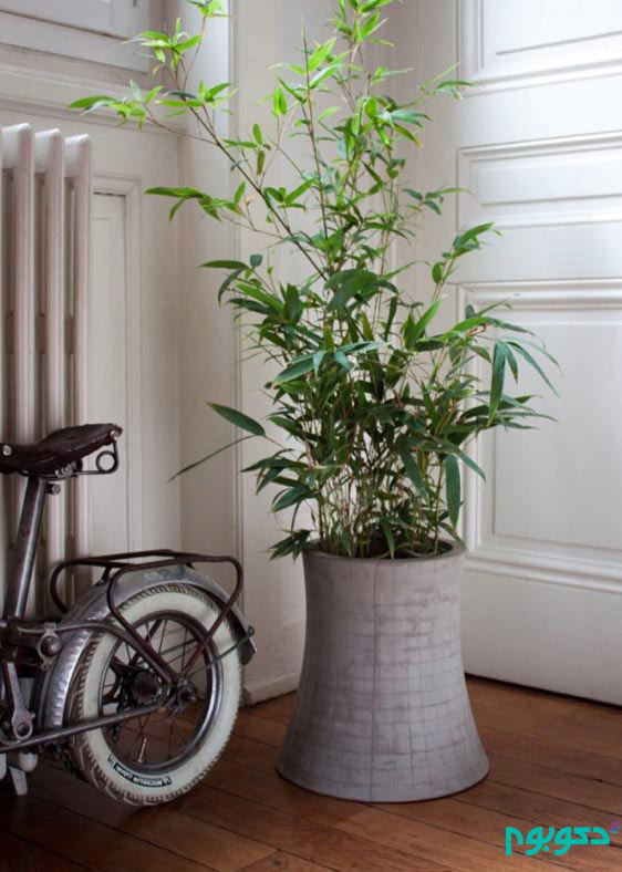 جلوه بی نظیر گلدان های بتنی در دکوراسیون منزل