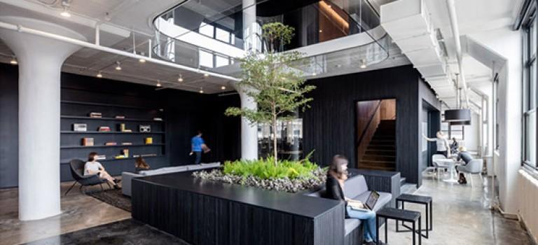 هندسه ای مربع شکل در دکوراسیون داخلی دفتر کار