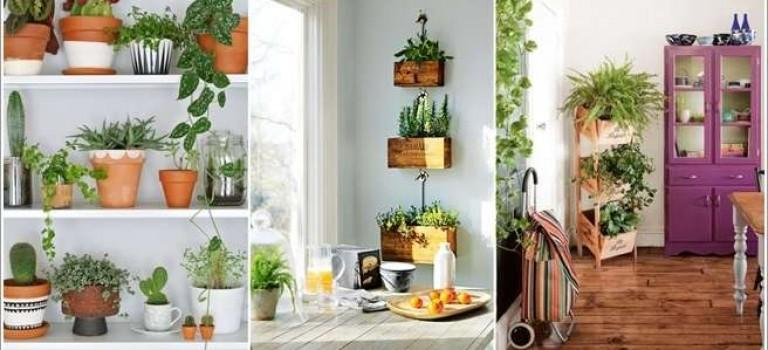ایده هایی برای سبز کردن فضای داخل آپارتمان با وسایل دور ریختنی