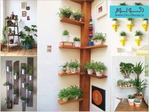 ۱۵ راه برای نمایش گیاهان در دکوراسیون داخلی خانه