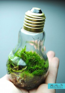 راه های هیجان انگیز بازیافت حباب لامپ